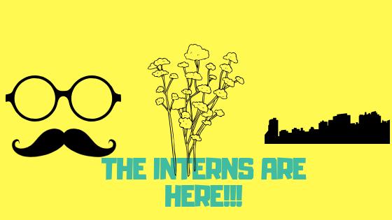 The Interns AreHere!!!